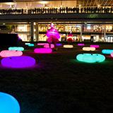 花のロンド 〜みんなの広場の花のお祭り〜